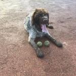 Murdoch and his balls